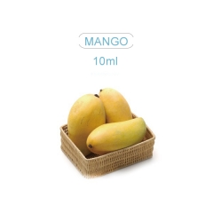 Smaak 10ml E-Liquid mango
